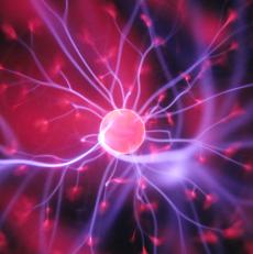 """Células madre: el largo camino """"aun en pañales"""", hacia una terapia para curar la ceguera"""